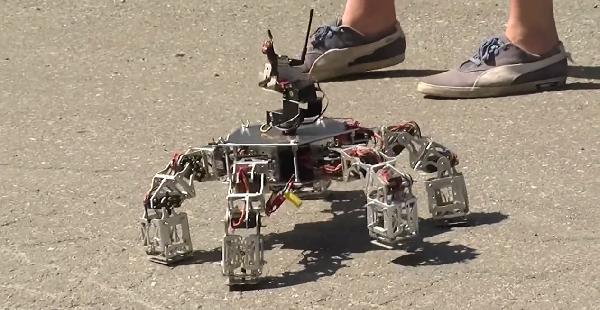 Modular five legged robot